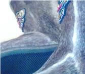 Изображение в Одежда и обувь Женская обувь Продам зимнюю обувь из лап северного оленя в Тюмени 9000