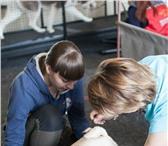 Фотография в Домашние животные Услуги для животных Фитнес для Вашей собаки! Хорошая физическая в Тюмени 800
