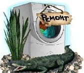 Изображение в Электроника и техника Стиральные машины Ремонт стиральных машин,  посудомоечных машин. в Нижнем Новгороде 0