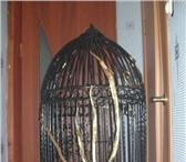 Фотография в Домашние животные Товары для животных антуражная кованая клетка для птиц,  с растительным в Санкт-Петербурге 12500
