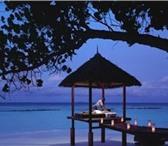 Изображение в Отдых и путешествия Туры, путевки Продается тур Шри-Ланка - Мальдивы - 10 незабываемых в Новосибирске 85000