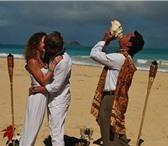 Изображение в Отдых и путешествия Туры, путевки Свадьба на Гавайях. Романтическая церемония в Владивостоке 35000