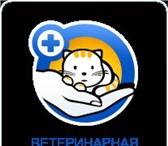Foto в Домашние животные Товары для животных Ветеринарная аптека доктора Чулковой - это в Волгограде 0