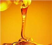 Foto в Красота и здоровье Товары для здоровья Высококачественный мед,  прополис,  перга, в Клин 0