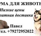 Изображение в Домашние животные Корм для животных Сухие корма для кошек и собак таких производителей в Самаре 1250