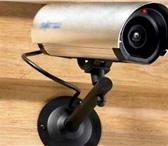 Изображение в Электроника и техника Видеокамеры Триколор тв Тверь. Видеонаблюдение ( камеры, в Твери 10000
