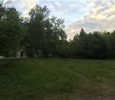 Фото в Отдых и путешествия Другое В 20 км. от города Омска, в березово – сосновом в Москве 4000000