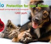 Фотография в Домашние животные Товары для животных Ультразвуковой отпугиватель клещей и блох в Омске 1200