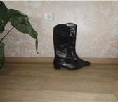 Фотография в Одежда и обувь Женская обувь Продаю 2 пары женских сапог - осенние и демисезонные, в Благовещенске 1300